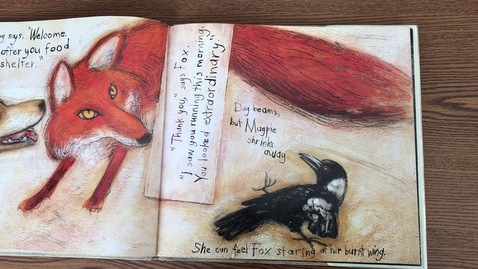 Thumbnail for entry Fox -Margaret Wild & Ron Brooks (ReadAloud)