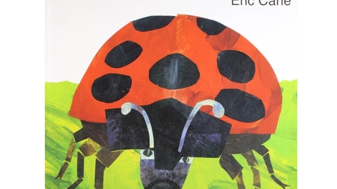 Thumbnail for entry The Bad Tempered Ladybird