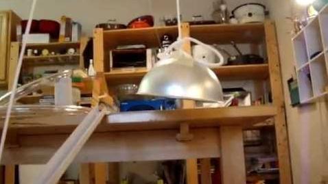 Thumbnail for entry Audri's Rube Goldberg Monster Trap