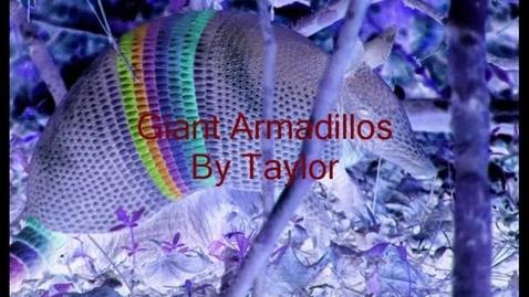 Thumbnail for entry Giant Armadillo