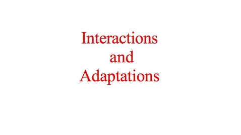 Thumbnail for entry Ecology: Interactions and Adaptations