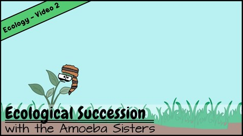 Thumbnail for entry Ecological Succession: Nature's Great Grit