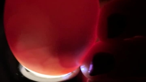 Thumbnail for entry 3/17 Day 10 Candling video