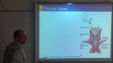 Thumbnail for entry Thyroid, Adrenal glands
