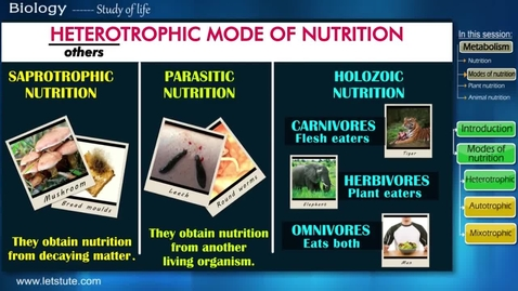 Thumbnail for entry Nutrition | Modes of Nutrition | Heterotrophic & Autotrophic | Biology | Science | LetsTute