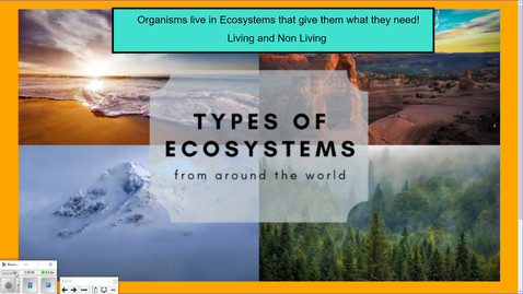 Thumbnail for entry Energy flow in Ecosystems-Food Chains