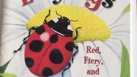 Thumbnail for entry Ladybug art collage