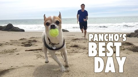 Thumbnail for entry Pancho's Best Day - Nic and Pancho