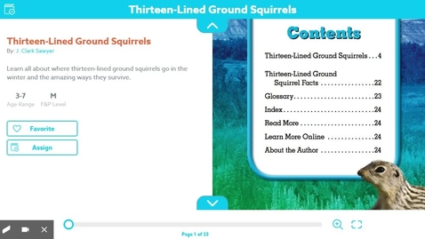 Thumbnail for entry 13 lined ground squriels
