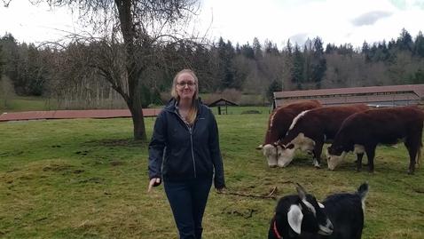 Thumbnail for entry Meet Mrs. Stocker's Animals!