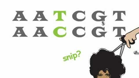 Thumbnail for entry Genetics 101 (Part 2 of 5): What are SNPs?