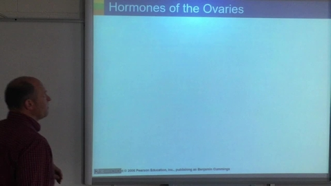 Thumbnail for entry Lecture - Sex Hormones