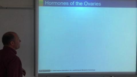 Thumbnail for entry Lecture - Sex Hormones