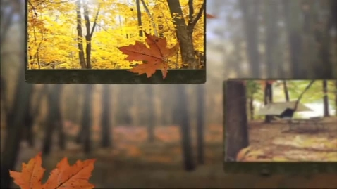 Thumbnail for entry The Science Behind Fall Color