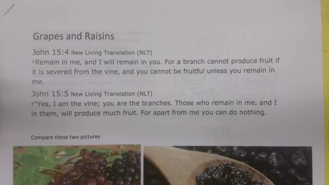 Thumbnail for entry 6th Grade Bible - Grapes and Raisins - Tuesday May 19
