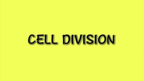 Thumbnail for entry Cell Division