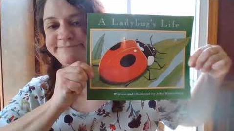 Thumbnail for entry A Ladybug's Life part 1