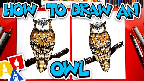 Thumbnail for entry How To Draw A Realistic Owl