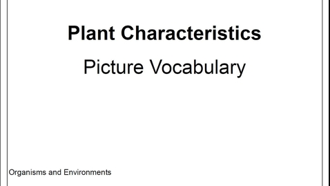 Thumbnail for entry Stemscopes Plant Characteristics- Picture Vocabulary