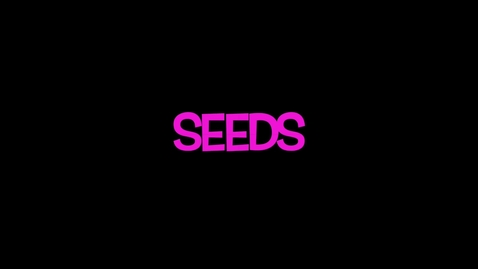 Thumbnail for entry Inside a Seed
