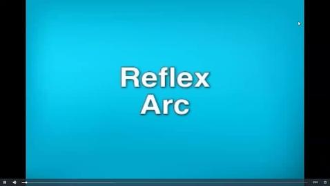 Thumbnail for entry Reflex