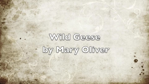 Thumbnail for entry Wild Geese by Mary Oliver