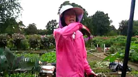 Thumbnail for entry Korean Gardens 23
