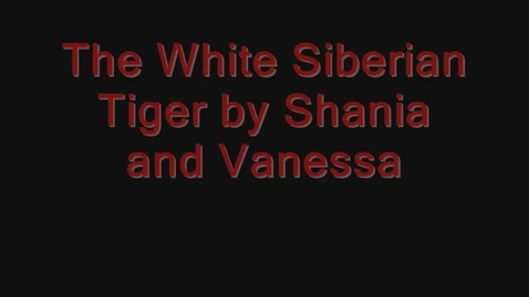 Thumbnail for entry The White Siberian Tiger By: Vanessa and Shania