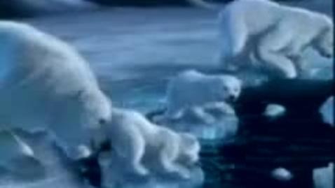 Thumbnail for entry Coca Cola Polar Bears