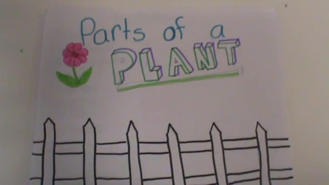 Thumbnail for entry Parts of a Plant