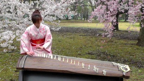 Thumbnail for entry さくら(Sakura) 25絃箏 (25 strings koto)