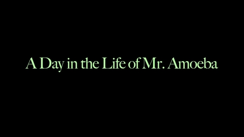 Thumbnail for entry A Day in the Life of an Amoeba