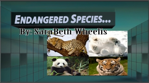 Thumbnail for entry SaraBeth Endangered Species
