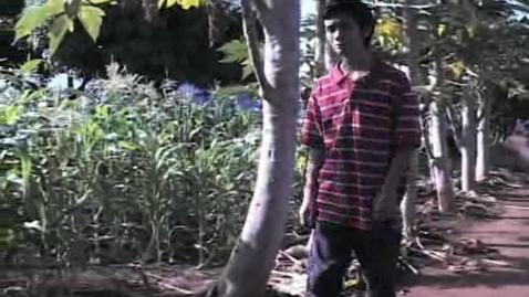 Thumbnail for entry Saber Media - Growing Gardens