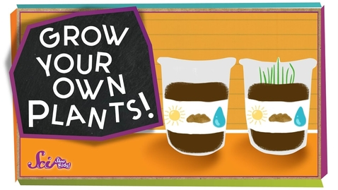 Thumbnail for entry Grow Your Own Plants! - #sciencegoals