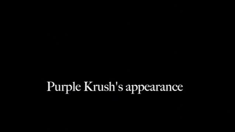 Thumbnail for entry Purple Krush