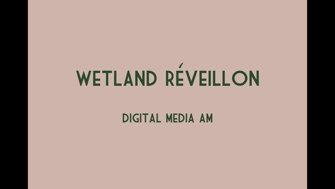 Thumbnail for entry Design Pitch: A Wetlands Réveillon