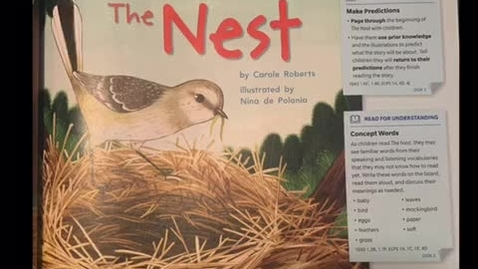 Thumbnail for entry The Nest