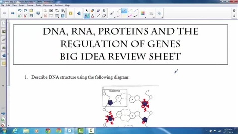 Thumbnail for entry DNA RNA transcription translation regulation big idea sheet