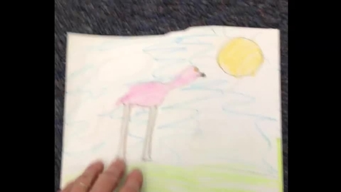 Thumbnail for entry Grade 1 Animal Research - Flamingos 2