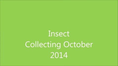 Thumbnail for entry Insect Collecting MMS 2014