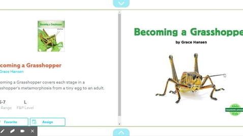 Thumbnail for entry Becoming a Grasshopper