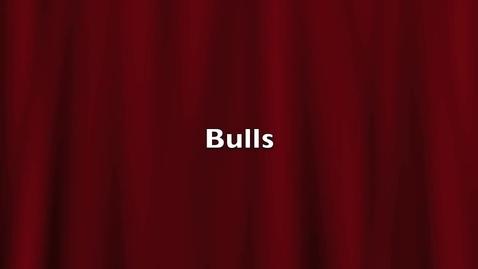 Thumbnail for entry Bulls by Jaden