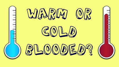 Cold & Warm Blooded Animals - SchoolTube - Safe video sharing and  management for K12