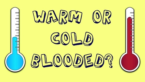 Thumbnail for entry Cold & Warm Blooded Animals