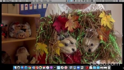 Thumbnail for entry Story Time: Chrysanthemum