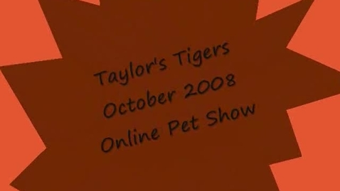 Thumbnail for entry pet show