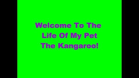 Thumbnail for entry my pet kangaroo