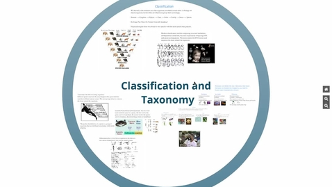 Thumbnail for entry Classification
