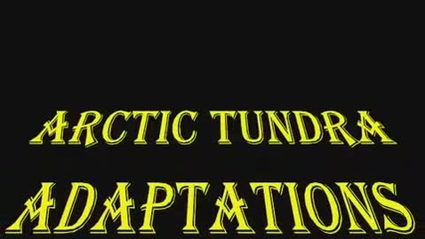 Thumbnail for entry Arctic Tundra